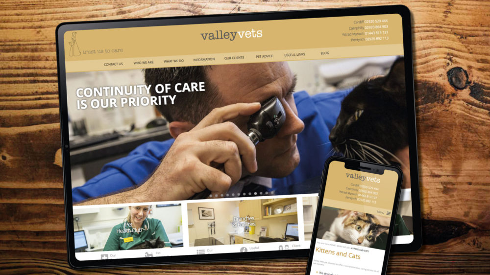 Web design in Cardiff for vets practice